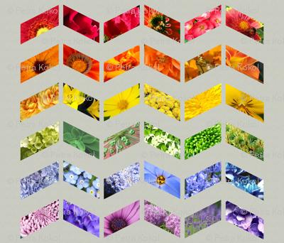 flower rainbow quilt