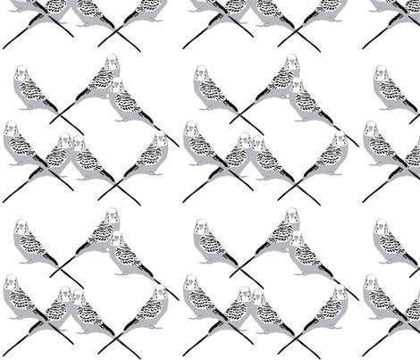 Parakeets---gray_shop_preview