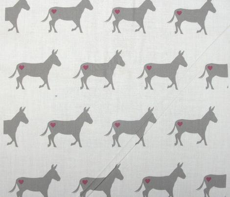 Donkey Love on White