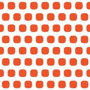Tangerine Squircle