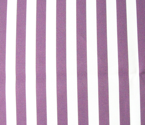 Rgirls-rock-purple-stripes_comment_212955_preview