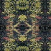 Rrdscf0150_1b_shop_thumb