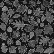 Rrrr0_leaf_etchings_wb_shop_thumb