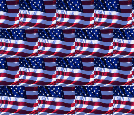 GOD BLESS AMERICA fabric by bluevelvet on Spoonflower - custom fabric