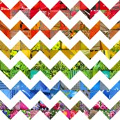 Rphoto_rainbow_chevrons_shop_thumb