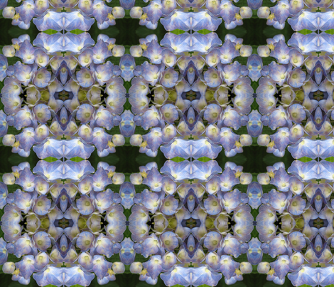 Blue Hydrangea_4758 fabric by falcon11 on Spoonflower - custom fabric