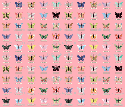 small_butterfly_pink