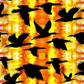 Rrrbirds_flying_home_at_sunset_shop_thumb