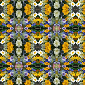 Kaleidoscope of Flowers_9827