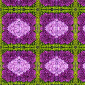 Purple Mosaic_4689