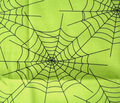 Rspiderwebs-on-green_comment_206177_thumb