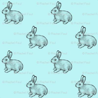 bunnies_aqua