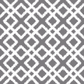 Weave Ikat _ Gray
