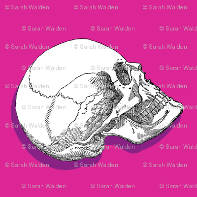 Yorick! Pink Shadow