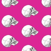 Rrrrside_skull_up_pink__shop_thumb