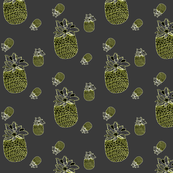 pineapples in gray