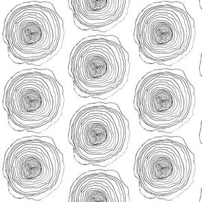 Rings in Wood