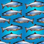 Rrainbowkingsalmonfabric_shop_thumb