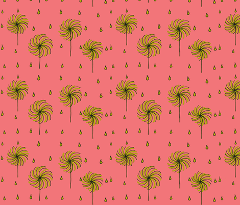 pink dandy