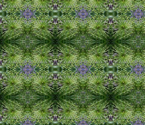 Alium Buds_8274 fabric by falcon11 on Spoonflower - custom fabric
