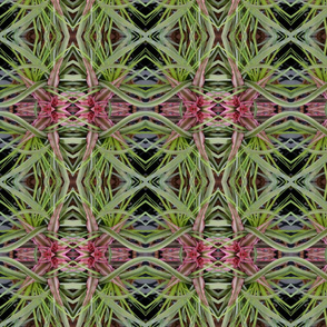 Green and Pink Weave_0401