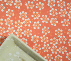 Rrmoss_garden_flowers_-_orange_comment_293174_thumb