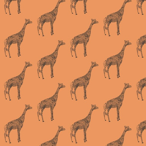 Giraffe Color