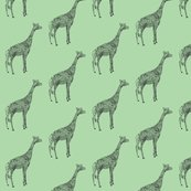 Rrrgiraffecolorgreen.ai_shop_thumb