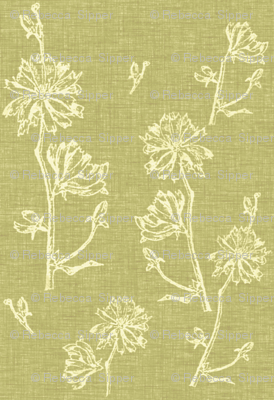 Chicory in Apple Green