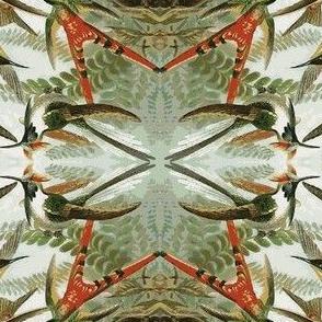 Humming Bird Jungle