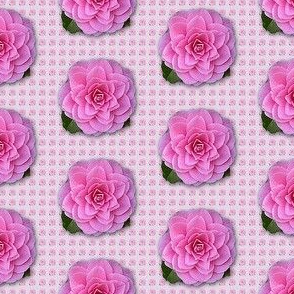 Camellia-pattern