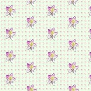 Campanula-pattern_