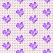 Rrrcrocus-pattern__shop_thumb