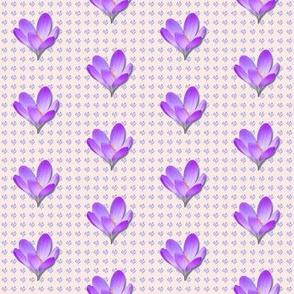 Crocus-pattern_