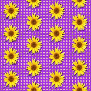sunflower-1-pattern__