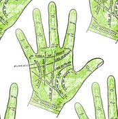 Rpalmistry_001_shop_thumb