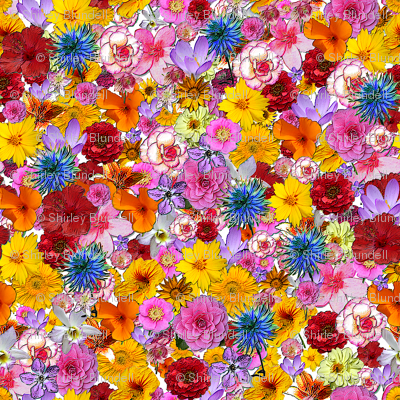 Millefiori- many,many colored flowers