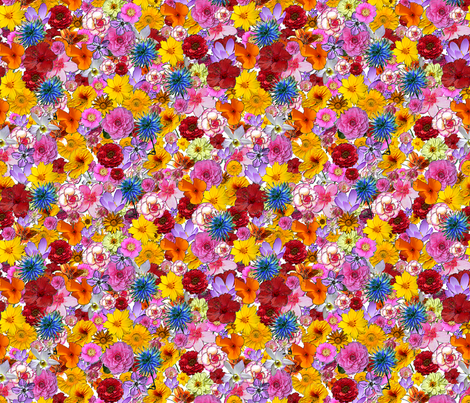Millefiori- many,many colored flowers fabric by koalalady on Spoonflower - custom fabric