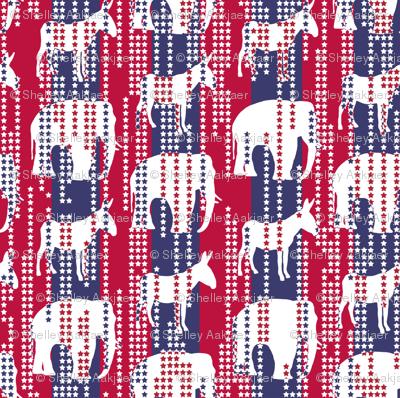 Stars in Stripes Election Style