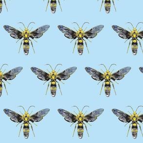 Bug Off- in blue