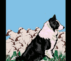 Border Collie Garden Flag Fabric