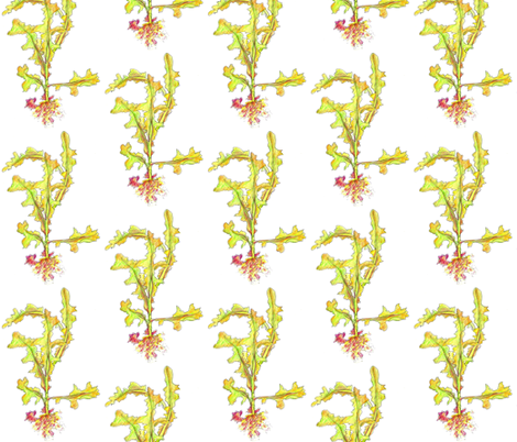 Wild Lettuce fabric by countrygarden on Spoonflower - custom fabric