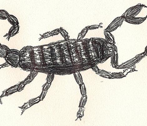 Ink Blot Scorpions