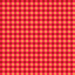 red gingham 4