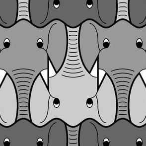 elephant head 3