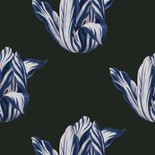 Rmidnight__tulips_in_navy_shop_thumb