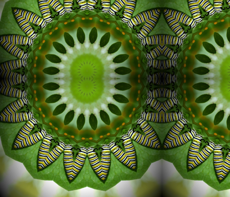 caterpillarkaleidoscope_1 fabric by aquakej on Spoonflower - custom fabric