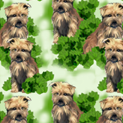 norfolk_terrier_seamless_pattern