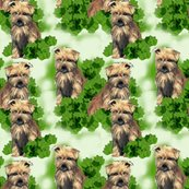 Rrrrnorfolk_terrier_seamless_pattern_shop_thumb