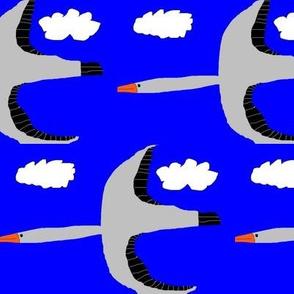 Glenna's birds